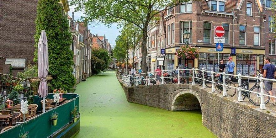 Hollanda vatandaşlarına tazminat ödeyecek