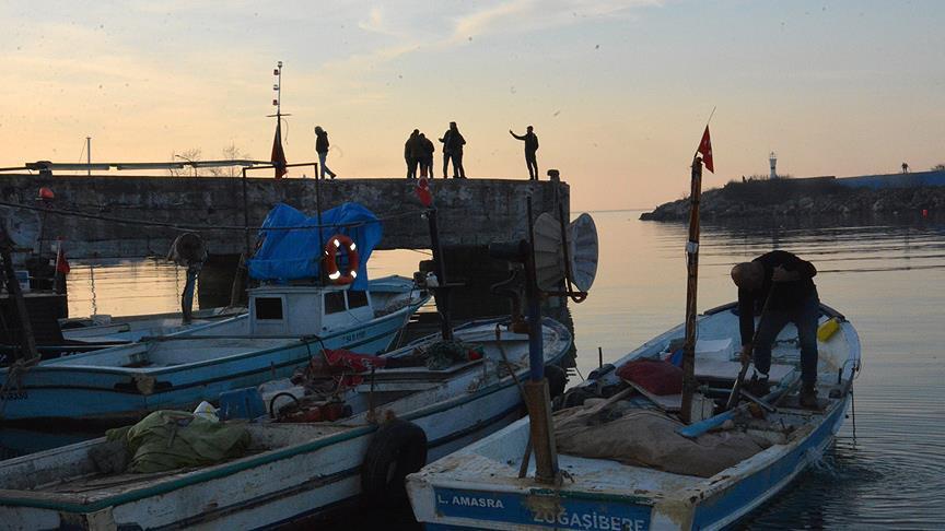Balıkçılar bu sezon umduğunu bulamadı