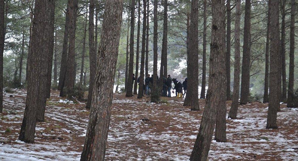 Ormanda bulunan kesik kol, oryantal Didem Uslu'ya ait çıktı