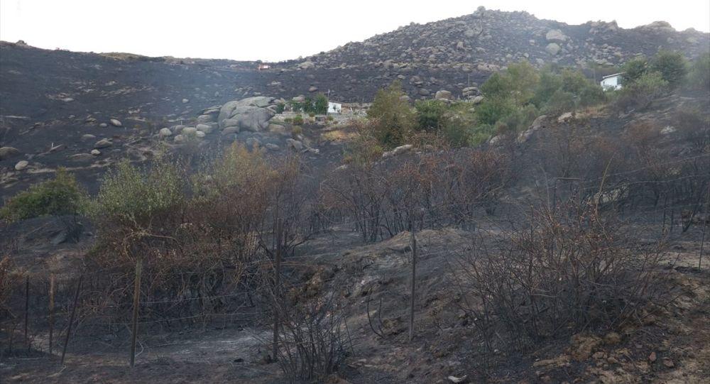 Marmara Adası'ndaki yangına ilişkin 1 kişi gözaltına alındı