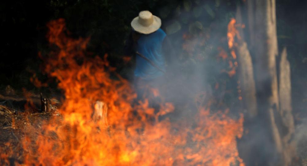 Brezilya'da Bolsonaro etkisi: Amazon ormanları yangınlarla yok olma noktasında