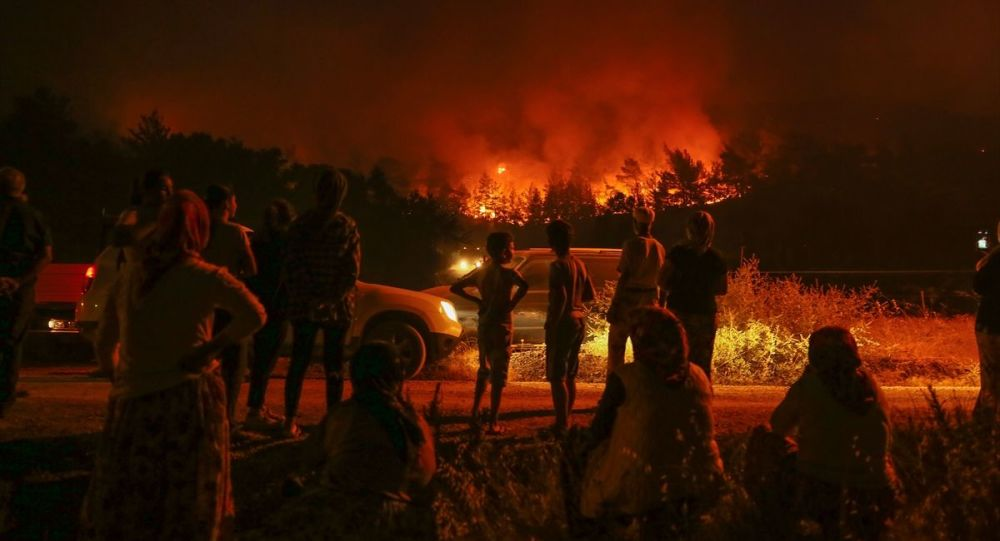 Pakdemirli, Soylu ve Akar hakkında İzmir'deki yangına ilişkin suç duyurusu