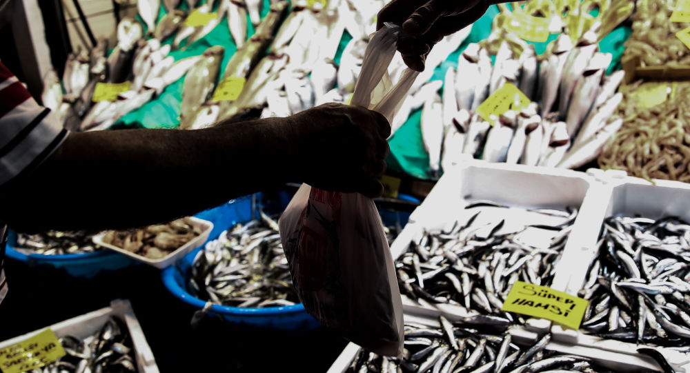 20 yılın en verimsiz sezonu: 'Kasım- aralık ayında balıkçılık bitebilir'