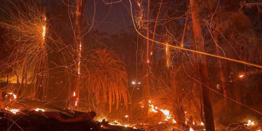 California'daki yangın 18 bin binayı tehdit ediyor