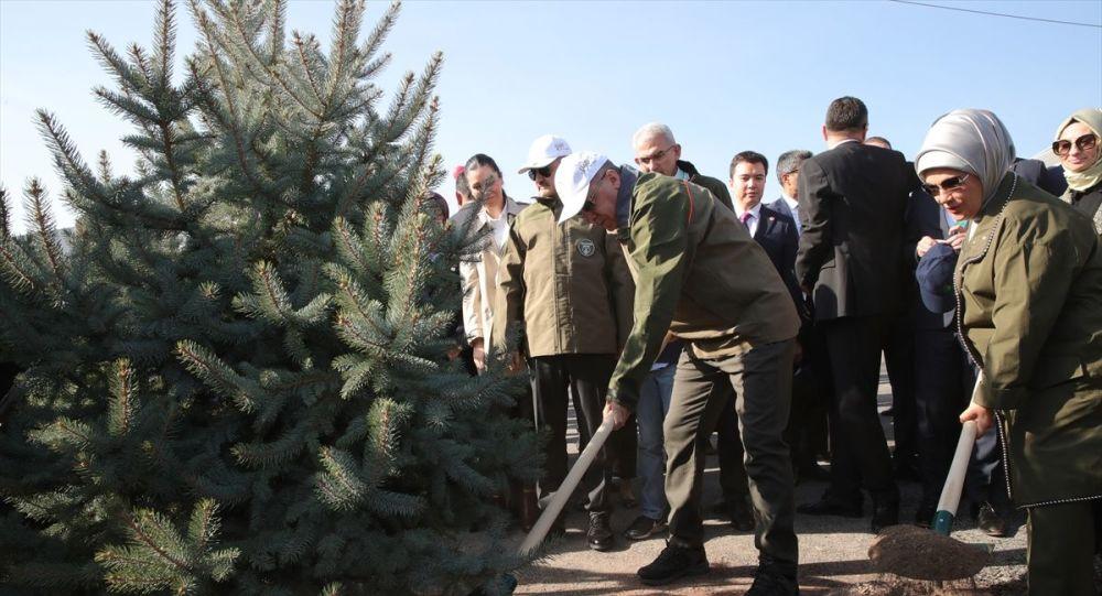 """""""Bizim yeşil sevgimizi, ağaç hassasiyetimizi kimsenin terazisi ölçmeye yetmez"""""""