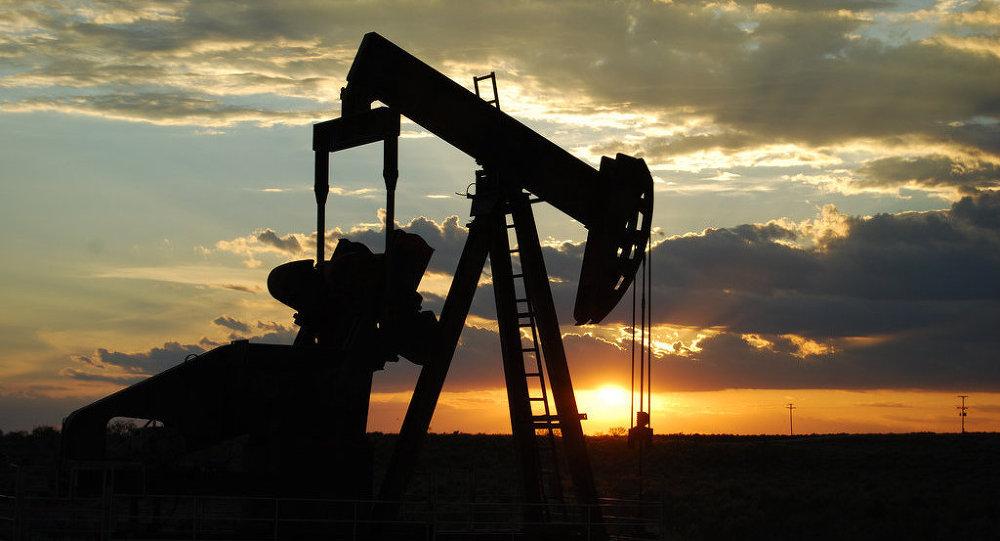 Varlık Fonu 10 milyar dolar yatırımla Ceyhan'da rafineri ve petrokimya tesisi kuracak