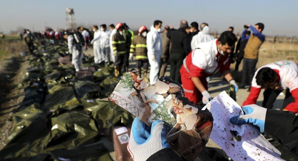 İran'da düşürülen Ukrayna uçağı: Gözaltılar var