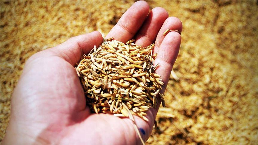 Tarım ve Orman Bakanlığı'ndan üretim kampanyası