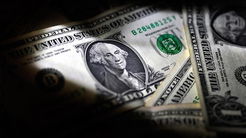 Arabayla gezintiye çıkan ABD'li çiftin çöp diye aldığı çantadan 1 milyon dolar çıktı