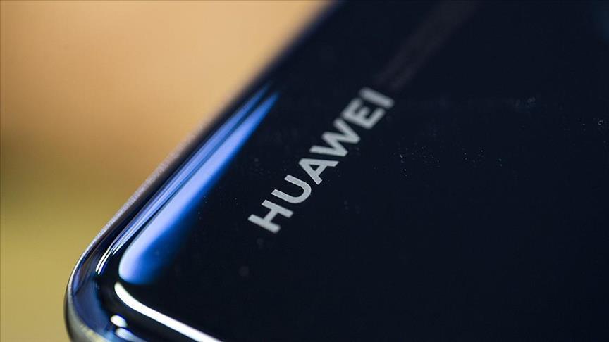 Huawei'den Google alternatifi: Petal Search