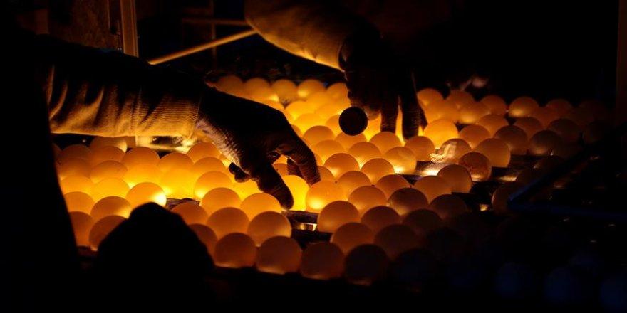 Gaziantep yumurtası Ortadoğu sofralarında