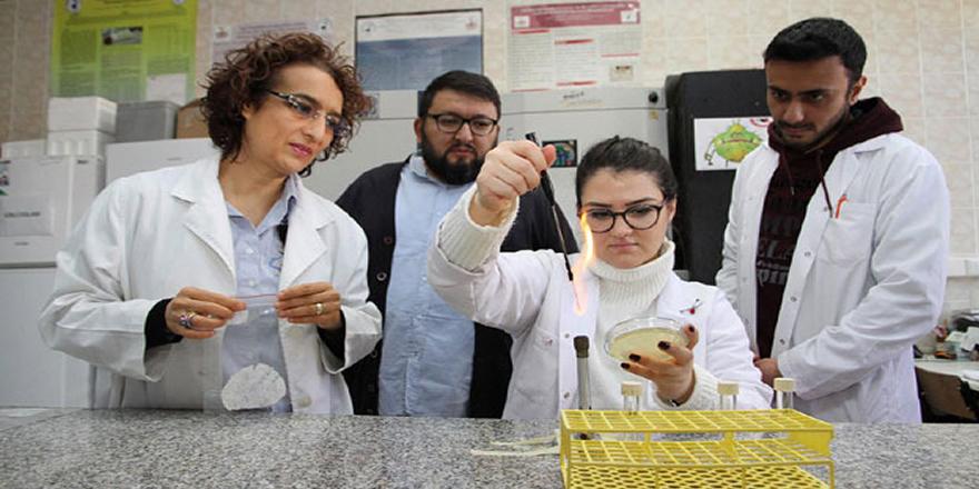 Pamukkale Üniversitesi'nde doğayı koruyan bakteri üretildi